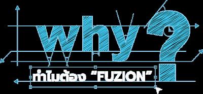 Why Fuzion